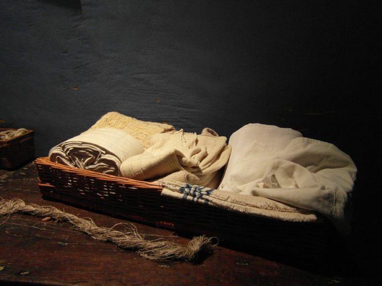 Como eliminar las polillas en la ropa seg n sitehisa - Como eliminar la polilla de la madera ...
