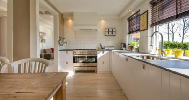 Cómo eliminar las plagas en tu hogar
