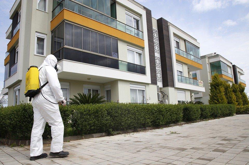 Razones por las que contratar un servicio de control de plagas profesional